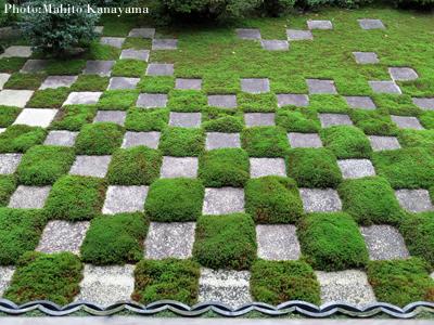 名庭園を訪ねる その1